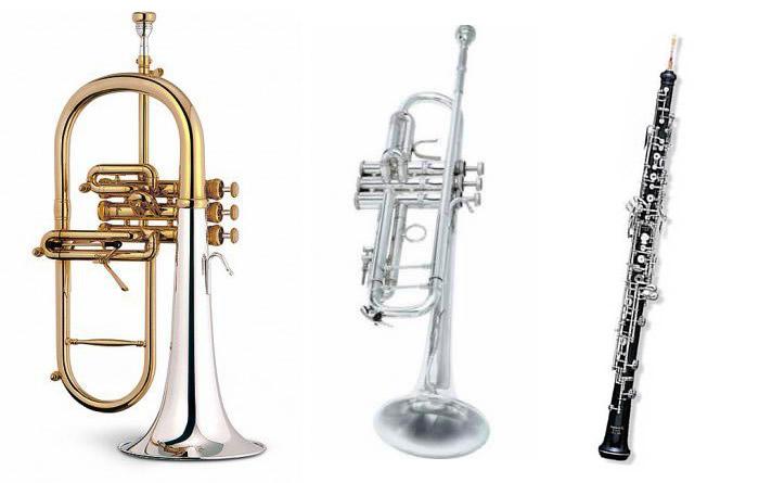 Foto (no son los sustraídos) de los instrumentos robados en Cullera y LHorta